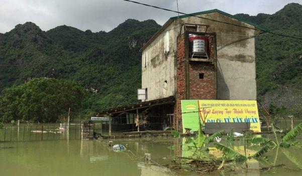 tin nóng lũ lụt