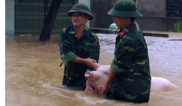 tin nóng về lũ lụt miền Bắc