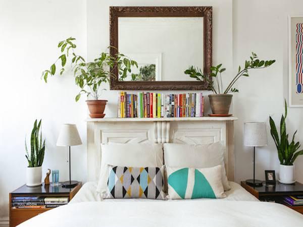 Top 3 cây phong thủy trồng trong phòng ngủ