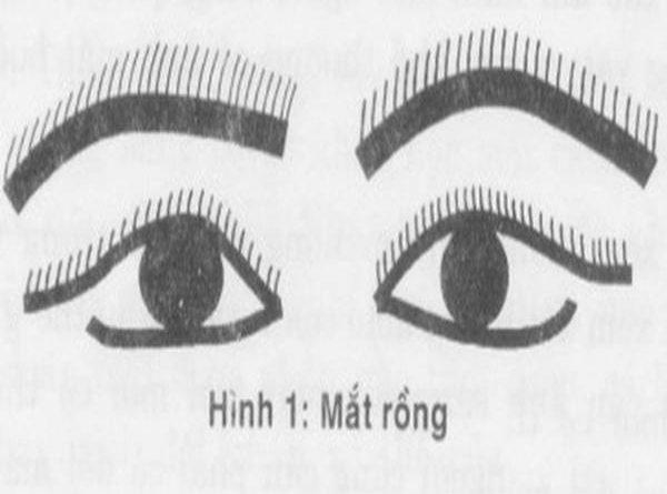 tuong-mat-rong