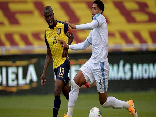 Nhận định tỷ lệ Uruguay vs Ecuador, 05h30 ngày 10/09 - VL World Cup